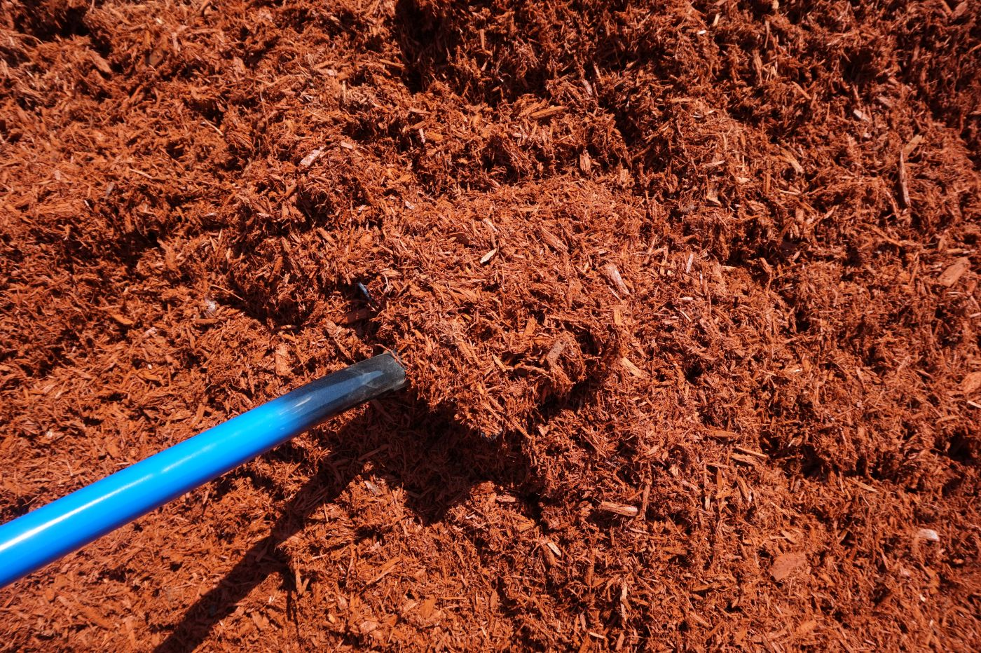 Buy red cedar mulch south shore landscape supply